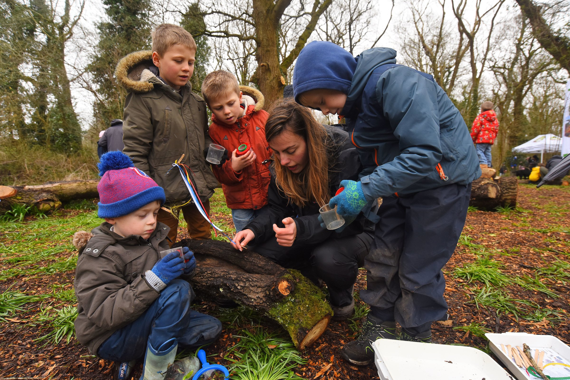 Bug hunting at the Holbury Manor wild play site opening April 2018