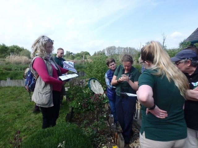 Butterfly and bumblebee survey training event