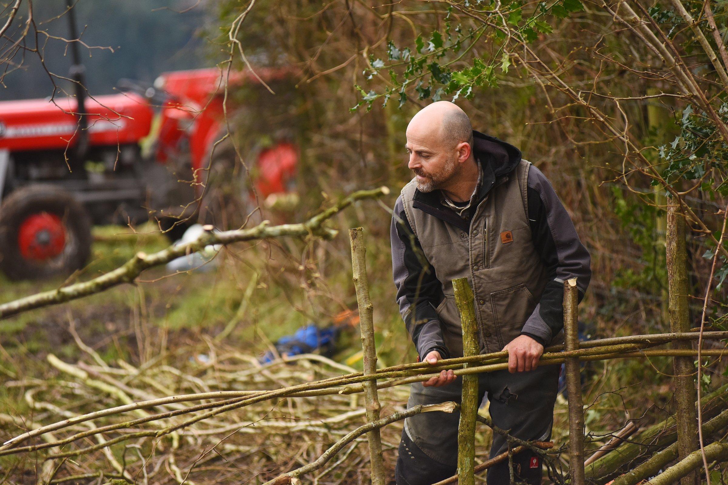 Professional hedgelayer Andrew Birnie