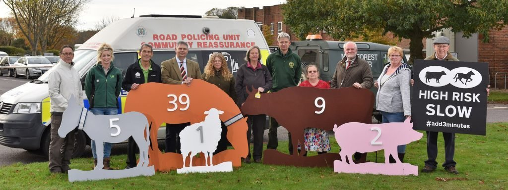 A picture of representatives of New Forest organisations hold painted animal silhouettes with numbers attached to show number of deaths in 2017