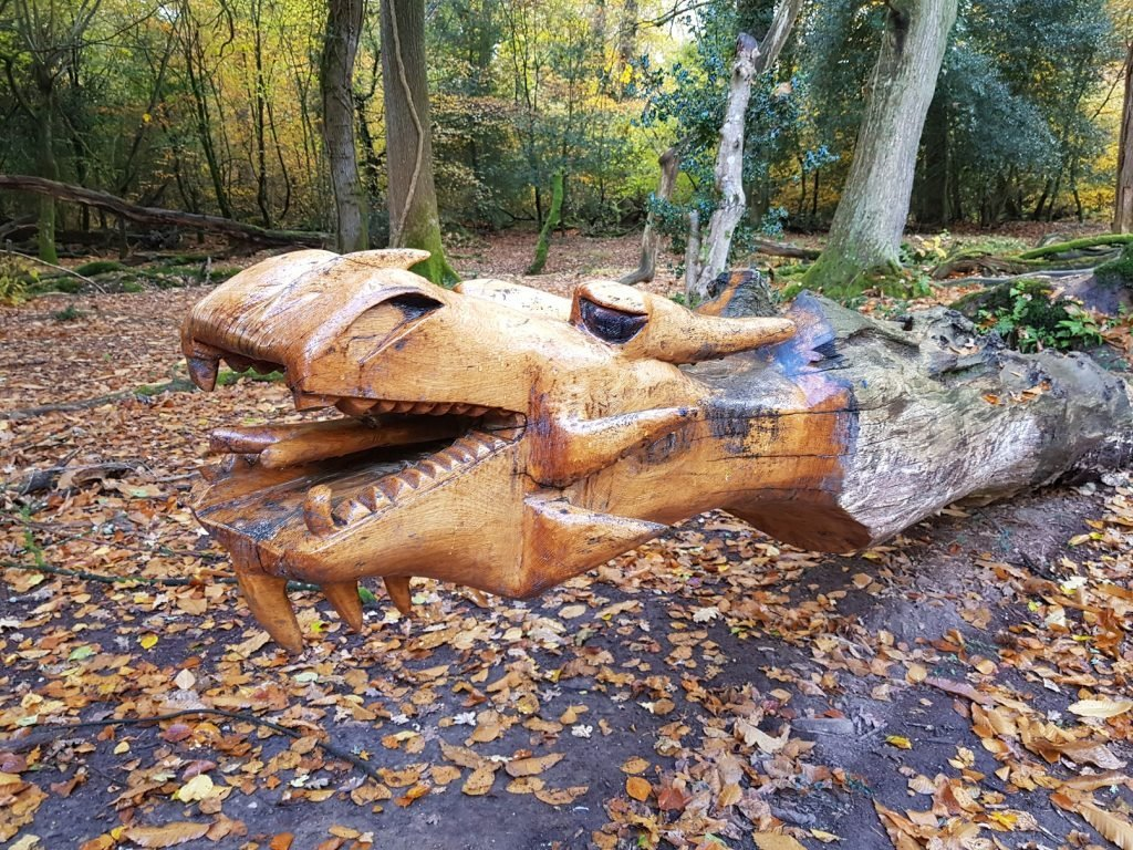 A picture of Dragon carving at Pondhead inclosure near Lyndhurst