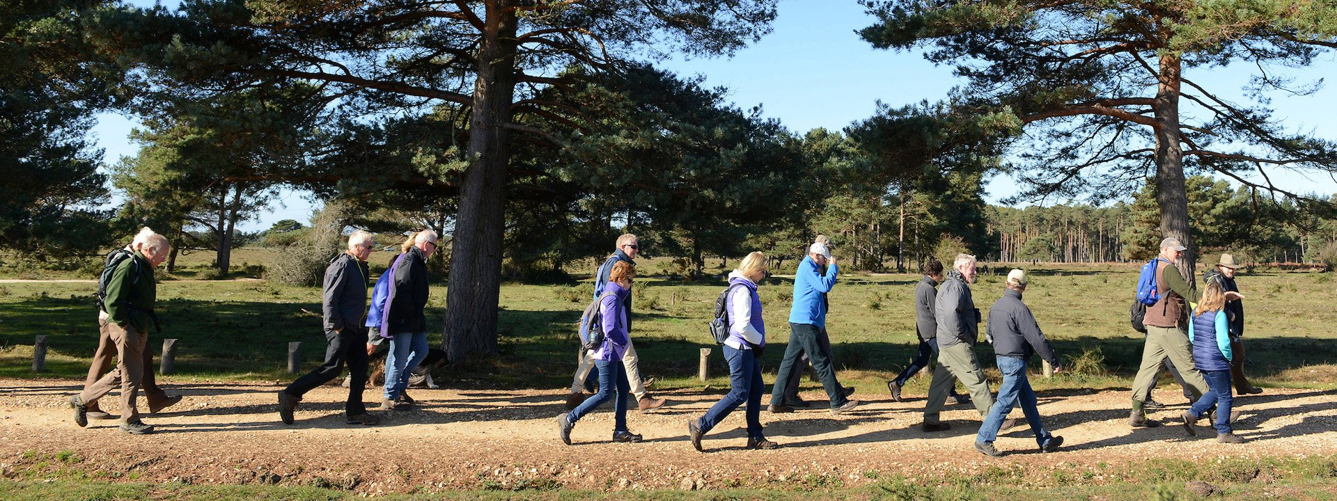 Walkers enjoy a New Forest Walking Festival stroll in Beaulieu.