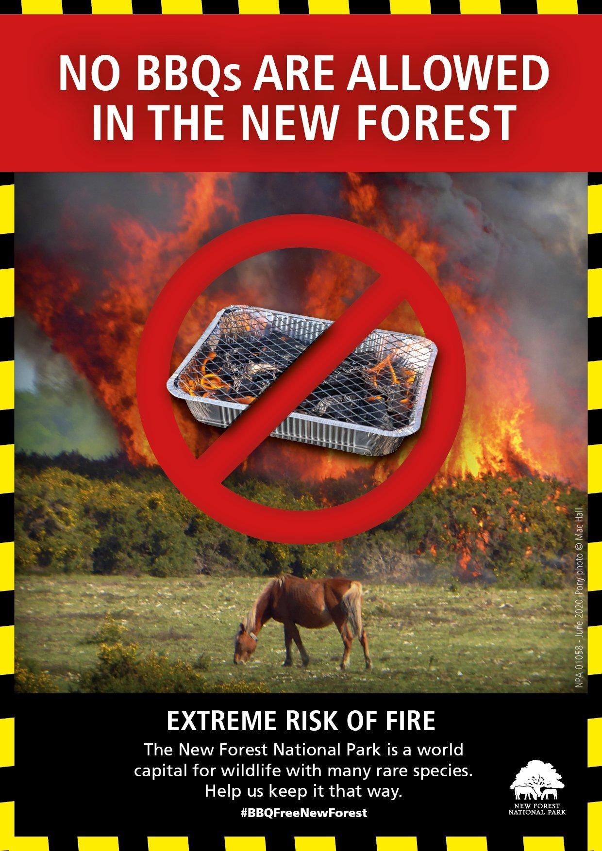 No BBQs poster