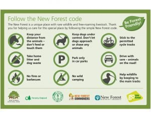 Infographic of New Forest Code