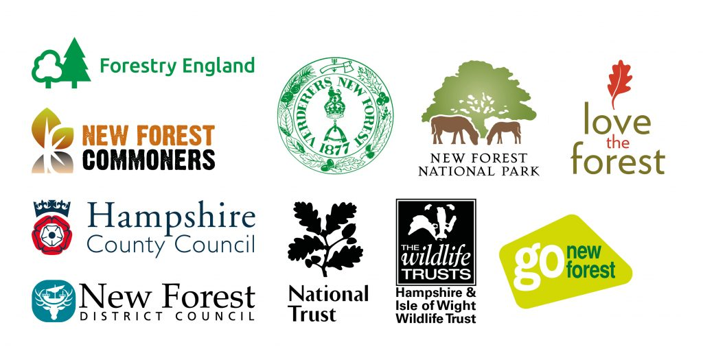 Logos for New Forest National Park Authority, Verderers New Forest, Forestry England, Go New Forest, New Forest Commoners, New Forest District Council, Hampshire County Council, National Trust, Hampshire and Isle of Wight Wildlife Trust.