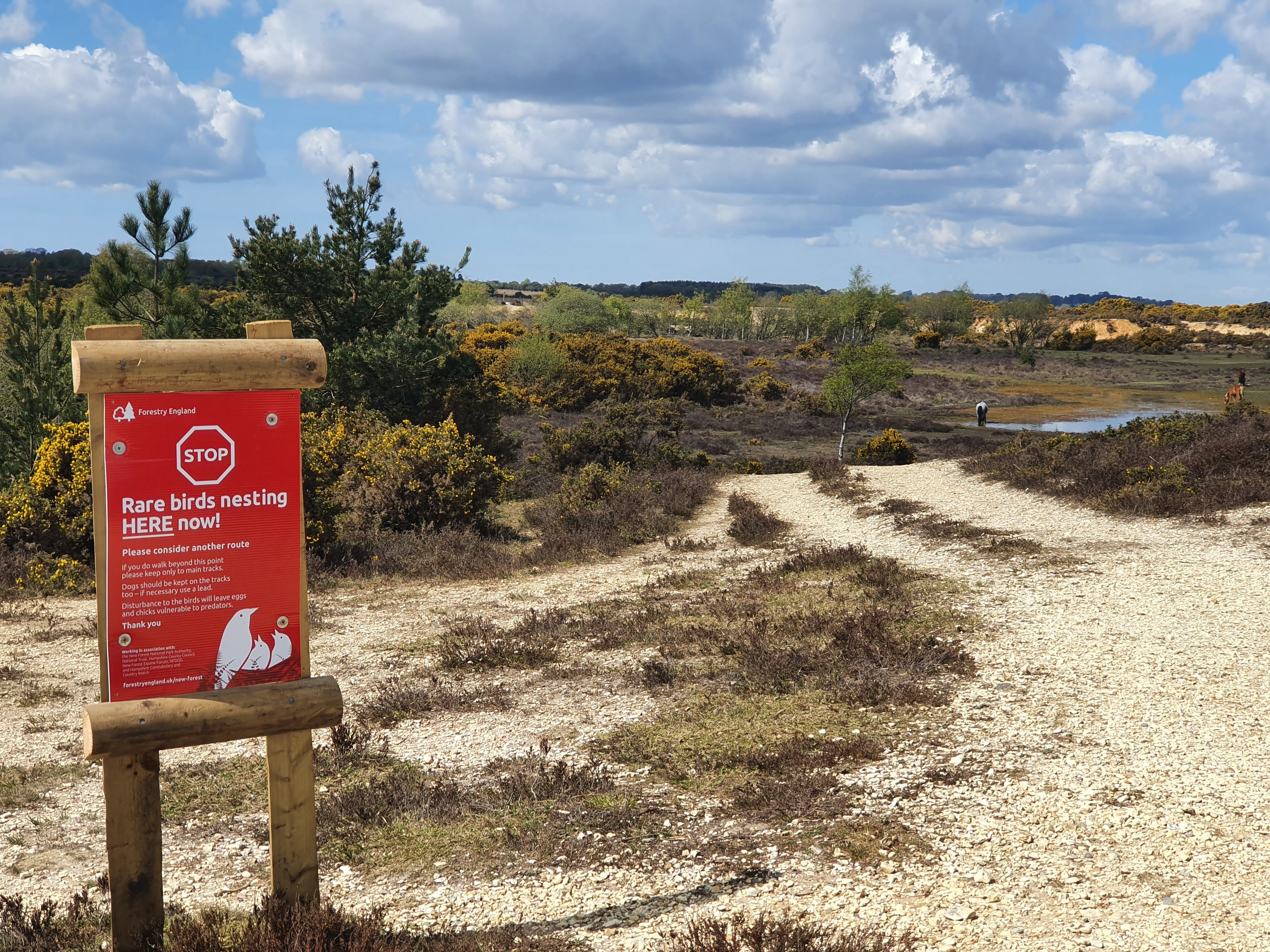 Ground nesting bird patrol view with the red signs